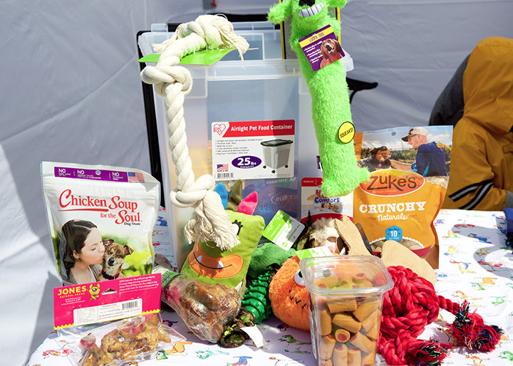 Grand prize basket donated by Vicki Loughary of Pet Supplies Plus  Bark Park Bunny Bash - Bark Park Initiative of the Jacksonville Park Foundation, event Sunday 25 March 2018 at Jacksonville PetSafe Dog Park. Photos by Steve & Tiffany of Warmowski Photography http://www.warmowskiphoto.com 217.473.5581 - 180325