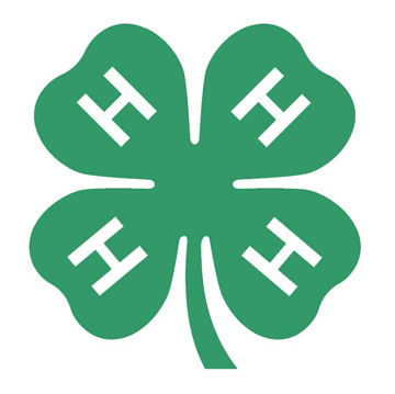 Foundation awards $45,000 in 4-H scholarships