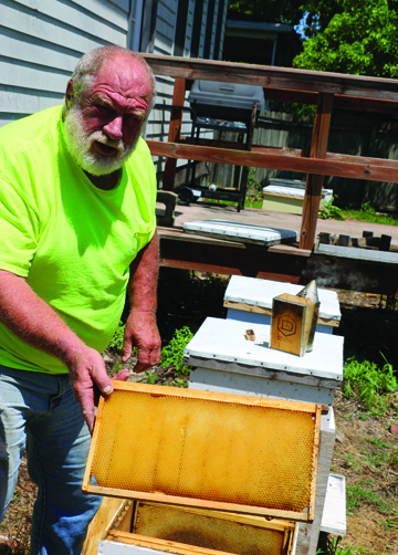 Photos/Kyla Hurt  Gary Glaenzer shows a frame that will go into a hive.