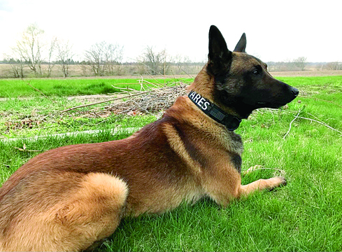 Jacksonville welcomes new K-9 unit, Ares