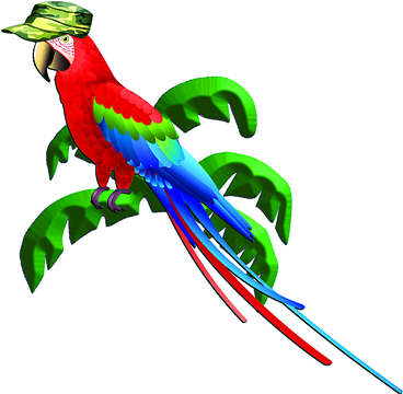 Parrot Head Night