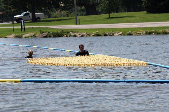 Duck Race for Lifeline