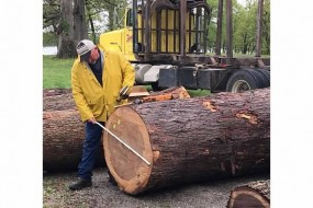 Western Illinois Youth Camp's Tree Farm Forestry Field Day