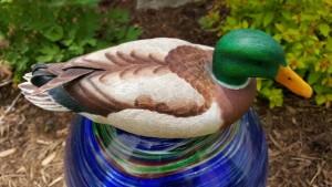 Marvin-duck01