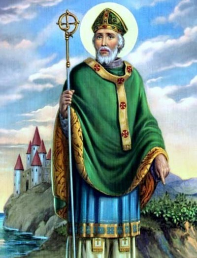 Image result for pictures of st patrick