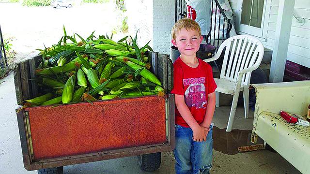 Roegge grins beside a bin of sweet corn.