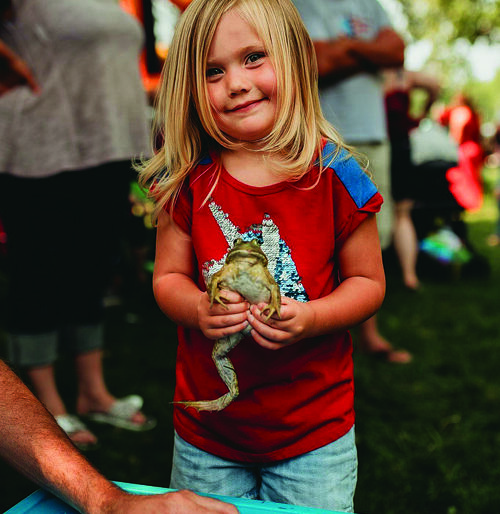 Winners in the 5 and under Frog Jumping contests celebrate their success with medals. Two-year-old Annlee Turprin prepares her frog to participate in the frog-jumping contest.