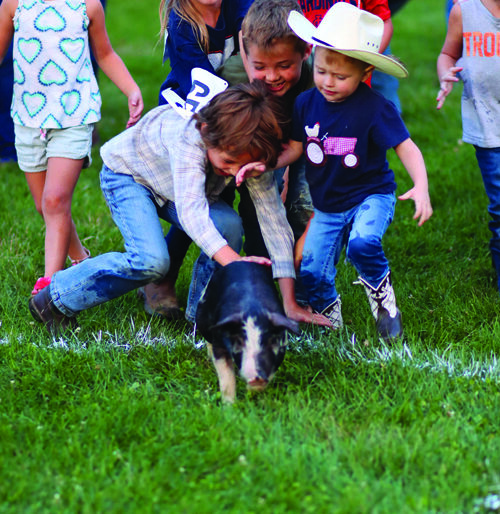 Participants trying to catch the pig.